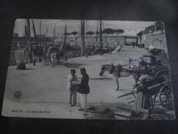 ROYAN LE QUAI DU PORT ATTELAGE  1904 - Royan