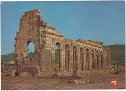 Volubilis - Basilique Et Le Capitol  - (Maroc) - Marokko