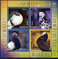 Roumanie Roemenie  Romania 2005 Yvertn° 5034-5037 *** MNH Cote 10,00 Euro Faune Oiseaux Vogels Birds - Pigeons & Columbiformes