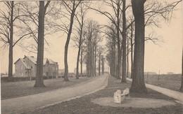 Tirlemont, Boulevard Slicksteen, 2 Scans - Tienen