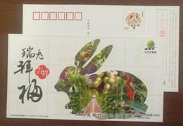 Fruit Grape,Muskmelon,Cherry Tomato,duck,China 2011 Beidahuang Modern Agricultural Park Lunar New Year Of Rabbit PSC - Obst & Früchte