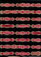 VITOLAS PUBLICITARIAS - Cigar Bands