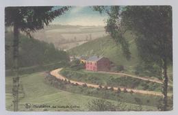 1924 HOUFFALIZE - La Route De Cowan - Houffalize