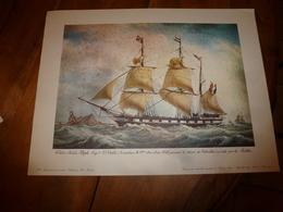 Trois Mâts ALFRED ,Capitaine Viale,au Détroit De Gibraltar, Pour ANTILLES (Portrait Navire  ,dim. Hors-tout = 48 X 36cm - Maritime Decoration