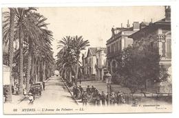 88. HYERES . L'AVENUE DES PALMIERS . CARTE TRES ANIMEE ECRITE AU VERSO LE 9 JUILLET 1922 - Hyeres