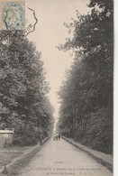 Rare Cpa Brunoy Entrée De La Forêt De Sénart Et Route De Quincy - Brunoy