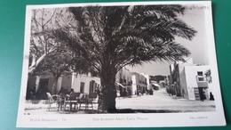 CPSM IBIZA BALEARES SAN ANTONIO ABAD CALLE MAYOR  FOTO VINETS PALMIER - Ibiza