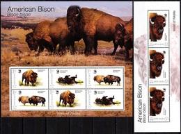 GRENADA 2012 FAUNA World Of Wildlife: American Bison. 2 MINI-SHEETS, MNH - W.W.F.