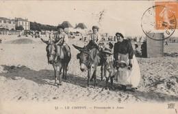 Rare Cpa Le Crotoy Promenade En ânes - Le Crotoy