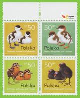 Voyo POLAND BIRD CHICKS  1997 Mi#3686-89 ** MINT - Unused Stamps