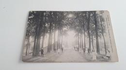 *CALLOO Inkoom Van Het Dorp Entrée Du Village  Animée Oblitérée En 1910 - Beveren-Waas