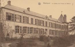 WATTRIPONT  , Le Château Des Princes De Béthune ( ANSEROEUL ,  FRASNES  LEZ ANVAING ) - Frasnes-lez-Anvaing