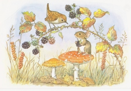 Illustrateur Molly Brett Blackberry Time Souris Oiseau Champignons - Andere Illustrators