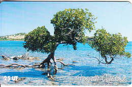 NEW CALEDONIA - La Mangrove, Used - New Caledonia