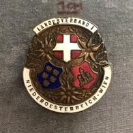 Badge Pin ZN008095 - Austria Niederöesterreich Wien (Vienna) Landesverband I - Army