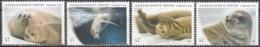 Australian Antarctic Territory 2018 Phoque Crabier Neuf ** - Territoire Antarctique Australien (AAT)