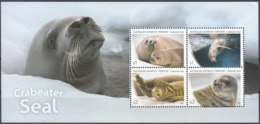 Australian Antarctic Territory 2018 Bloc Feuillet Phoque Crabier Neuf ** - Territoire Antarctique Australien (AAT)