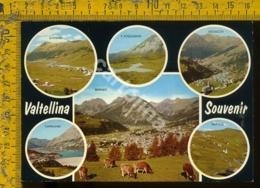 Sondrio Valtellina - Sondrio