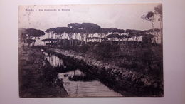 Vada (Livorno) - Un Tramonto In Pineta - 1918 - Viaggiata - Livorno