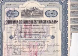 ACCION ACTIONS COMPAÑIA DE INMUEBLES Y ACIENDA AÑO 1916 $10 M/N CADA UNA SIGNEE BUENOS AIRES-RARE- BLEUP - G - I