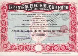ACCION ACTIONS LE CENTRAL ELECTRIQUE DU NORD SA. BRUXEULLES CAPITAL 5000000f  AN 1929 SIGNE-RARE- BLEUP - Elektrizität & Gas