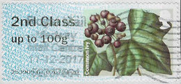 GB 2014 Winter Greenery 2nd Type 1 Used Code 253909 [32/173/ND] - Great Britain