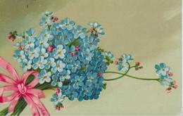 AK 0171  Vergiss-mein-nicht - Feldpost Um 1917 - Blumen