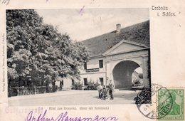 CPA Rare, Trebnitz I. Schies, Hôtel Zum Kronprinz (unter Den Kastanien) - Poland