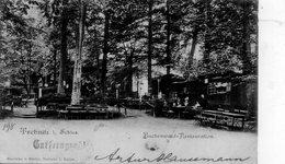 CPA Rare, Trebnitz I. Schies, Buchenwald-Restauration, Animée - Poland