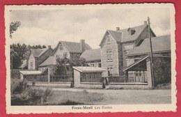 Freux-Menil - Les Ecoles ( Voir Verso ) - Libramont-Chevigny