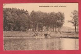 Freux-Libramont - Un Etang De La Pisciculture  ( Voir Verso ) - Libramont-Chevigny