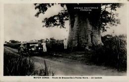 MOYEN CONGO - Route De Brazzaville à Pointe-Noire - Un Baobab - Pointe-Noire