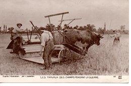 LES TRAVAUX DES CHAMPS PENDANT LA GUERRE ( Moissonneuse Bateuse ) - Guerre 1914-18