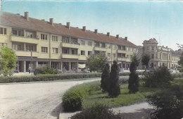 Virovitica 1965 - Bulgarie