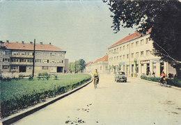 Virovitica - Bulgaria