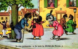 CHATS DEGUISES - JE ME PRESENTE JE SUIS LE SHAH DE PERSE - Cats