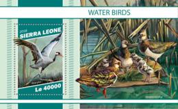 Sierra  Leone  2018  Fauna  Water Birds S201901 - Sierra Leone (1961-...)
