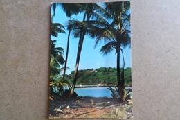 GUYANE - Ile Royale Vue De L'Ile St Joseph ( Guyane ) - Guyane