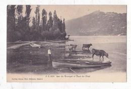 Carte Postale             Lac Du Bourget Et Dent De Chat - France