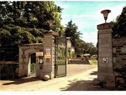 CPM* N°2221 - LOT DE 2 CARTES DE BASSE-GOULAINE - RESTAURANT DU PARC - DUTEIL PROPRIETAIRE - Haute-Goulaine