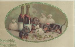 Hond - Chien - Dog - Hund - Serie 5006/2 - Chiens