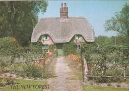 CP - The New Forest Cottage  - Non Ecrite - - Autres