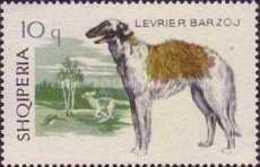 USED STAMPS Albania - Dogs  -1965 - Albania