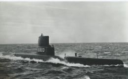 Boot - Bateau - Ship - Shiff -  Hr. M.S. Onderzeeboot Zeeleeuw - Onderzeeboten