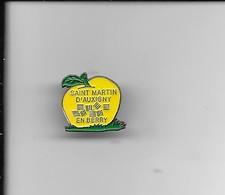 PIN'S SAINT MARTIN D'AUXIGNY - Villes