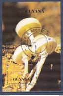 Guyana - Guyane - Bloc Oblitéré - 1990 - Guyane (1966-...)