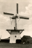 Rhoon, Korenmolen, Windmill, Witte Hert, Real Photo - Watermolens