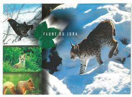 CP Faune Du Jura (39) Coq Renard Ecureuil Lynx - Ohne Zuordnung