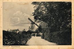 Ouddorp, Korenmolen, Windmill, De Hoop, Local Dress - Watermolens