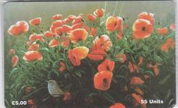Isle Of Man, MAN 122, Poppies, Flowers, Bird, Mint In Blister, 2 Scans. - Isla De Man